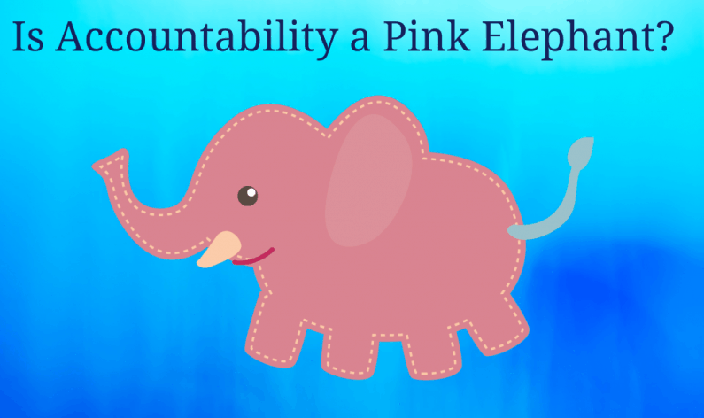 Is Accountability a Pink Elephant?