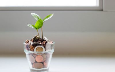 4 Essential Plans for Predictable Successful Business Growth